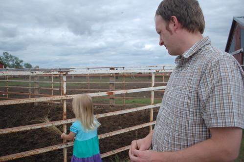 farm 073