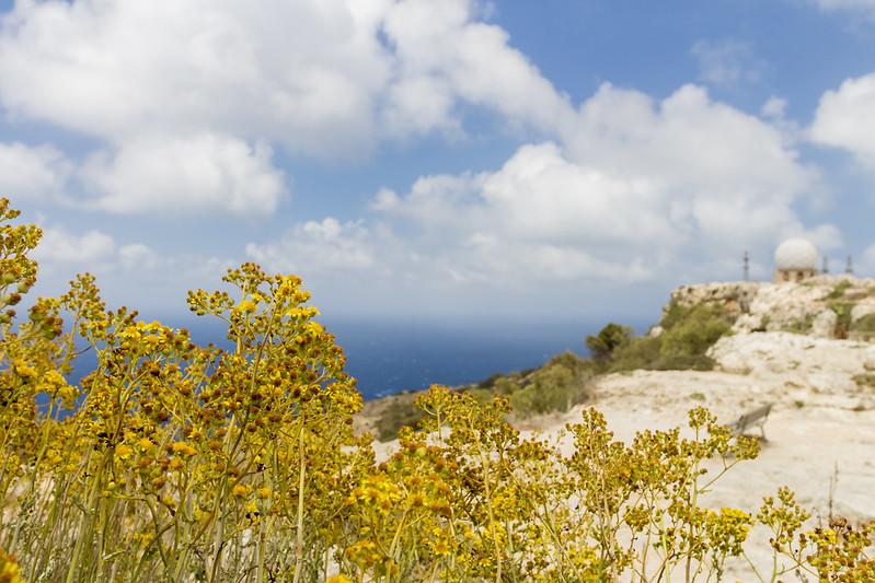 Dingi Clifs & Radar - Malta