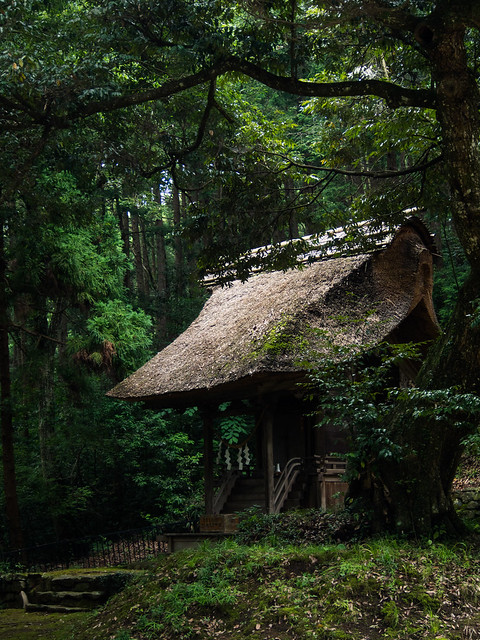 Shinto shrine in forest