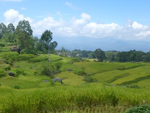Sulawesi13-Lo'ko Mata-Ke'pa (12)