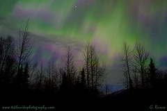 Alaskan_Lights