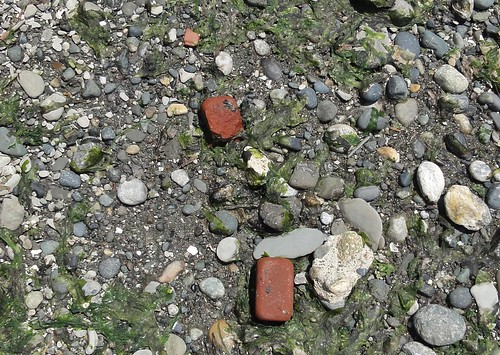 Our red cobbles in the making! These were on South Beach at Discovery Park, where there's more than just outstanding bluffs to keep you occupied.
