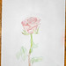 GacekSimon_ 01.06.2013 12-01-35.jpg