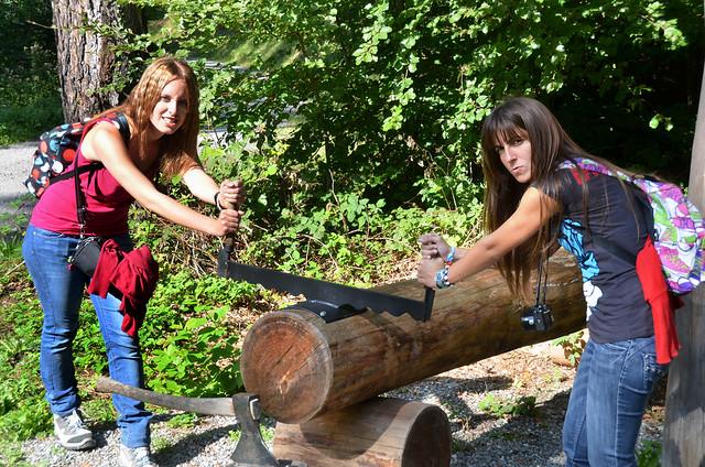 Serrando un árbol como el abuelito de Heidi