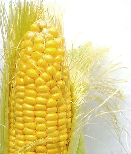Corn photo by Darwin Bell/Wikimeida Commons