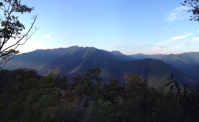 小津権現山