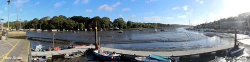 Penryn River, Cornwall by Stocker Images