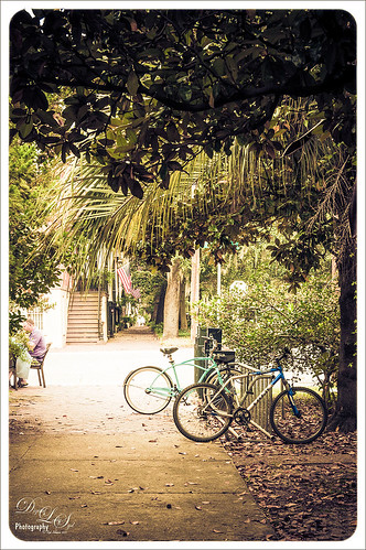 Image of a side street with bikes in Savannah