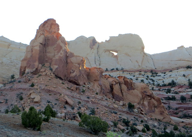 Capitol Reef - Upper Muley Twist 010