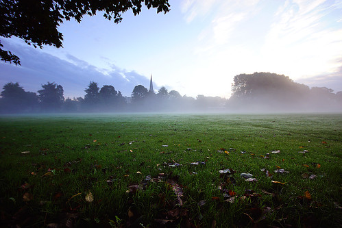 trees mist grass sunrise dewdrops autumnleaves spire dew chichester sigma1020mm chichestercathedral a65 alpha65
