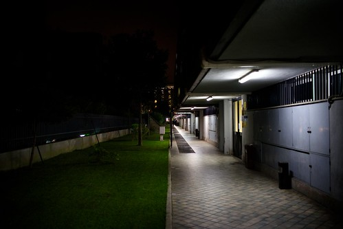"288/365 - ""Night Walking"" nr.15 by Luca Rossini"