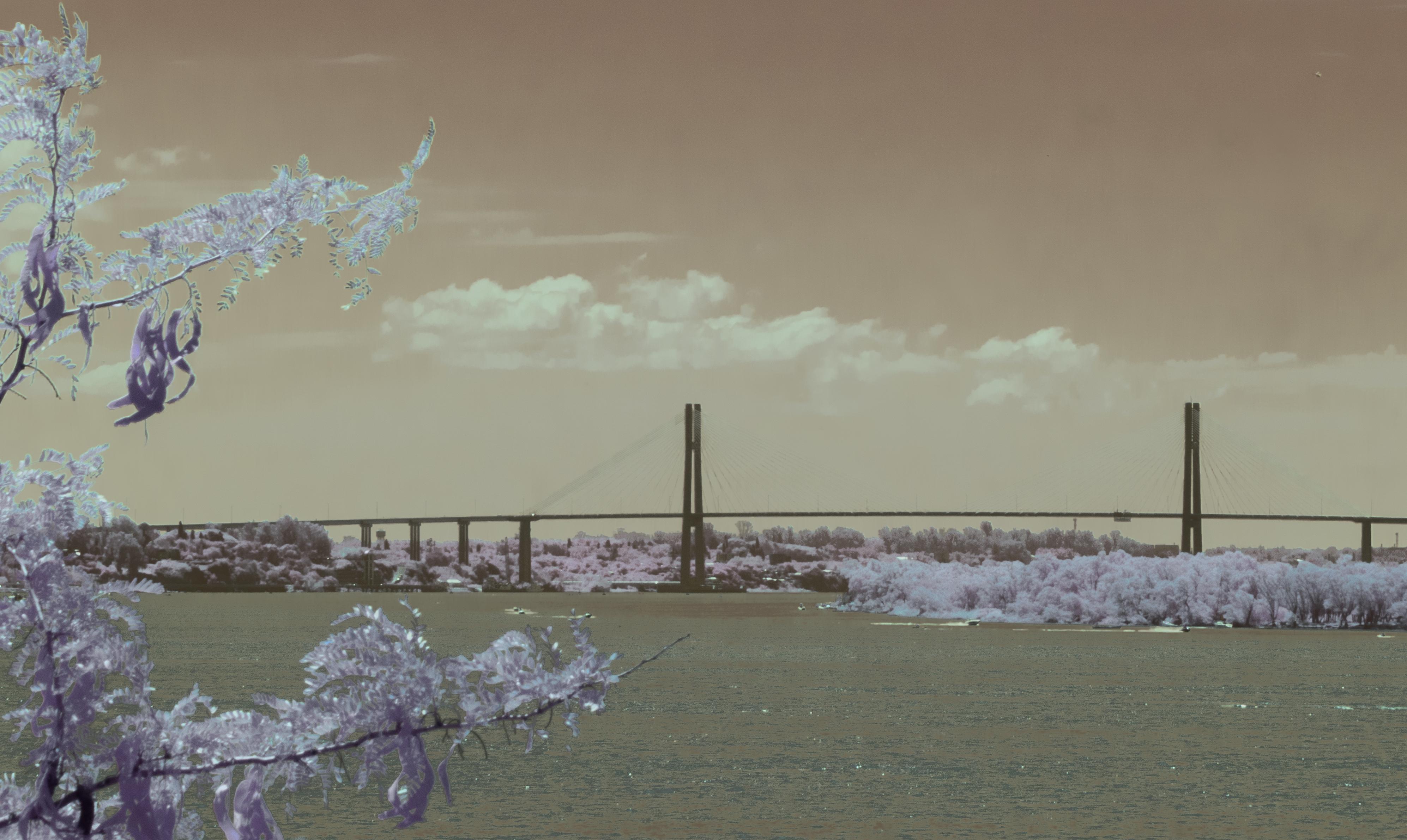 El puente Rosario-Victoria (infrarroja)