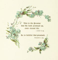 """British Library digitised image from page 6 of """"Forget Me Nots of Promise. Texts from Scripture and verses by F. R. Havergal"""""""