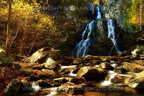 park autumn light blackandwhite color nature water colors season landscape outdoors photography virginia waterfall cool warm unitedstates highlights falls foliage cast shade shenandoah colorcast southriver stanardsville silverefexpro coffeetint