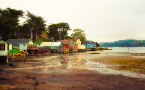 Low Tide on Tomales Bay by skip.kuebel