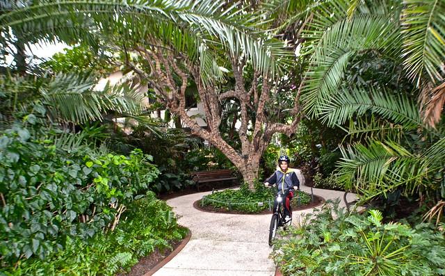 The Breakers Palm Beach - bike rental