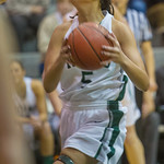 2014-01-19 -- Women's basketball vs. Wheaton.