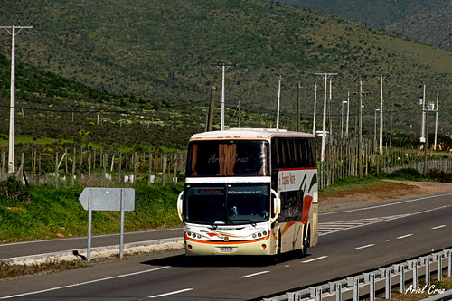 TACC Expreso Norte en Ruta | Busscar Panorâmico DD / BWPV88