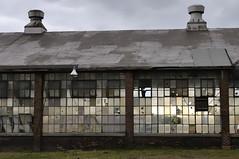Toronto Brockton Village - Sterling Road - gutted abandoned factory