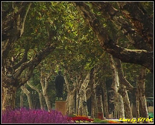 杭州 西湖 (其他景點) - 082 (湖濱路的湖畔花園)