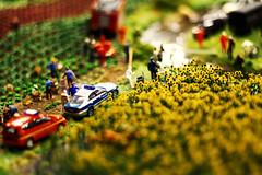 Miniatur Wunderland: Sonnenblumenfeld
