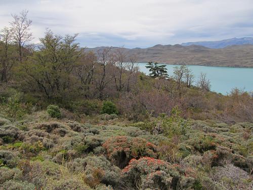 Torres del Paine et ses jolies couleurs
