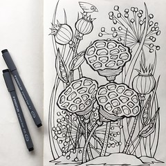 Have far too much on my plate at the moment! So therapeutic doodles are saving the day ... and what remains of my sanity! Another one for that coloring-book-to-be I think. Drawn with @staedtlermars pens in my @moleskine_arts journal. #floatinglemons #mole