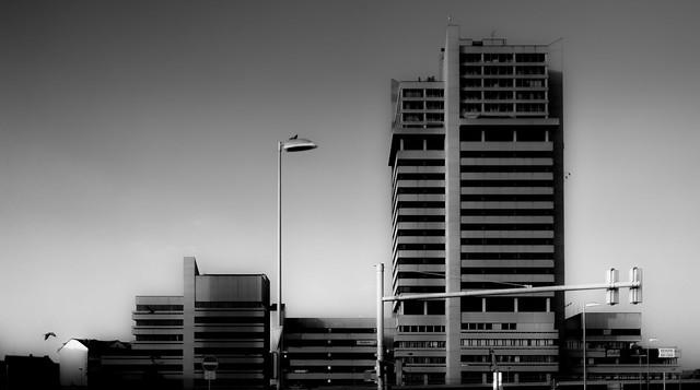 Header of brutalism