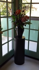 Black Cylinder Pedestal with Plant
