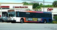 361 3 San Pedro Skip (1)