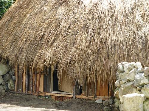Papou13-Wamena sud-Sugokmo (109)