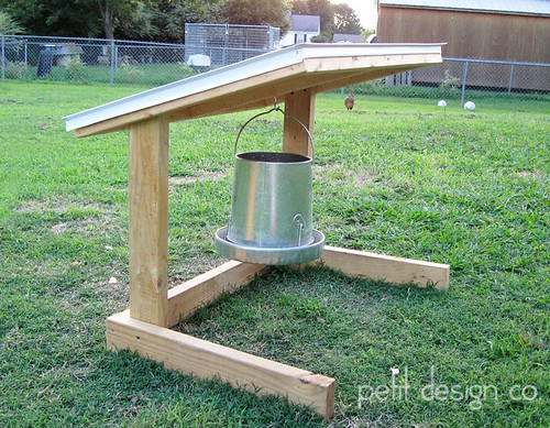 Chicken feeder hanger
