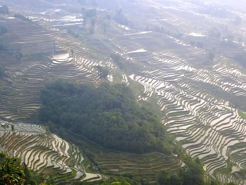 Yunnan13-Yuanyang 24-Bada (23)1