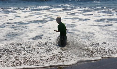 Eli beach combing