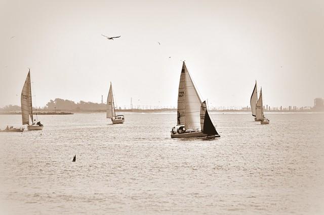 Sailing Ventura