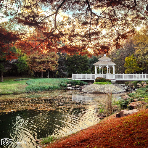 park autumn tree fall apple leaves dallas pond north gazebo addison iphone5 winnwood iphoneography capturedallas rsnavaphotography ricardosnava