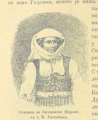 "British Library digitised image from page 834 of ""Србија, опис земље, народа и државе"""