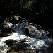 Small photo of Mother Cummings Rivulet 62 - Cascade