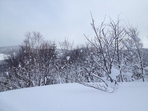 朝里川温泉スキー場 パープルリフト頂上-01 20140103