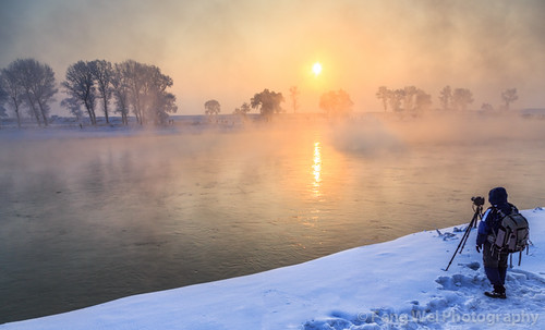 china morning travel winter snow cold color tree tourism beautiful beauty horizontal sunrise season landscape dawn twilight scenery colorful asia alone loneliness photographer view outdoor scenic vista chilly lonely desolate jilin songhuariver wusong wusongisland wusongdao