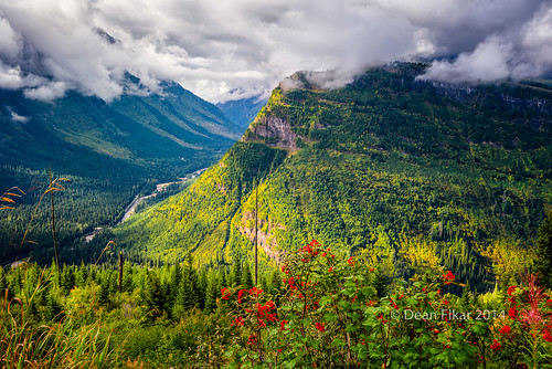 road park morning autumn trees shadow red sky panorama mountains west green nature sunshine clouds forest landscape outdoors montana berries unitedstates scenic going glacier foliage national glaciernationalpark rugged steep goingtothesunroad westglacier