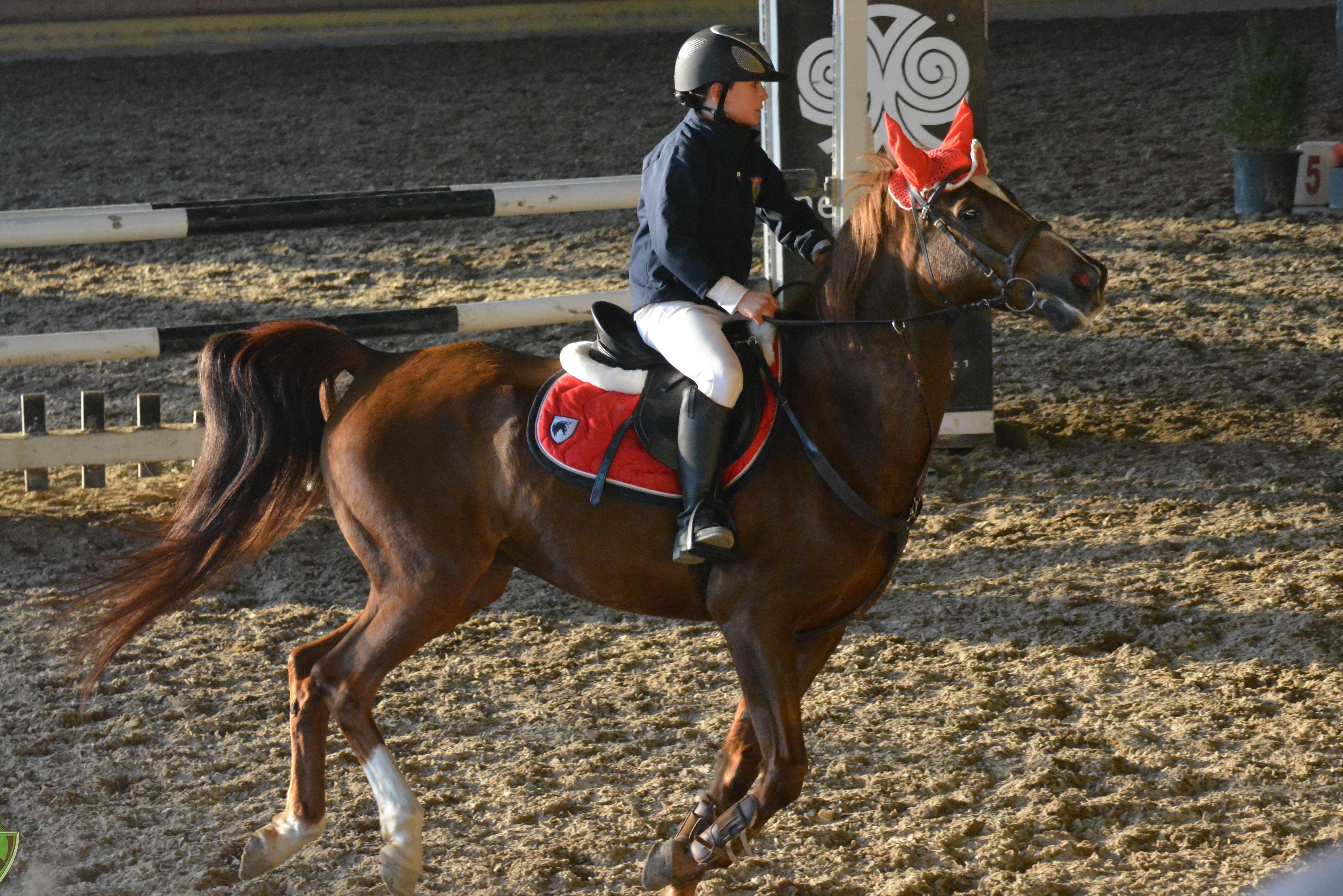 Concorso Ippico Pony&Cavalli