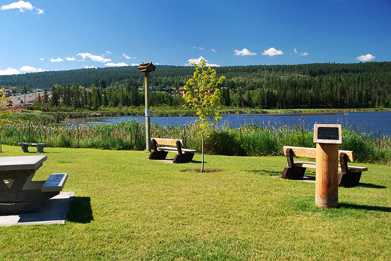 100 Mile Marsh in 100 Mile House, Cariboo, British Columbia, Canada