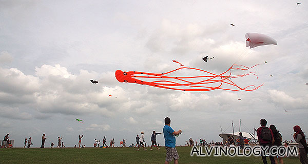 Colourful, assorted kites decorating the sky