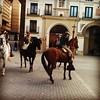 Caballistas en Tudela el día de San Antón