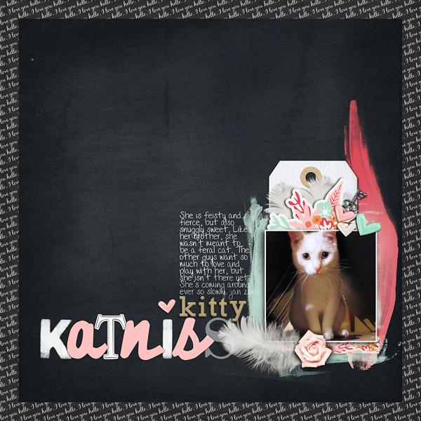 Kitty Katniss