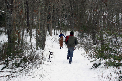 A jog through the snowy woods