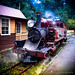 2014 - Puffing Billy