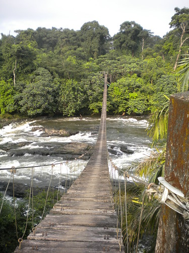 Cameroon 20-012 Korup National Park (1,240 km2) hanging bridge over Mana River Credit Christos Astaras