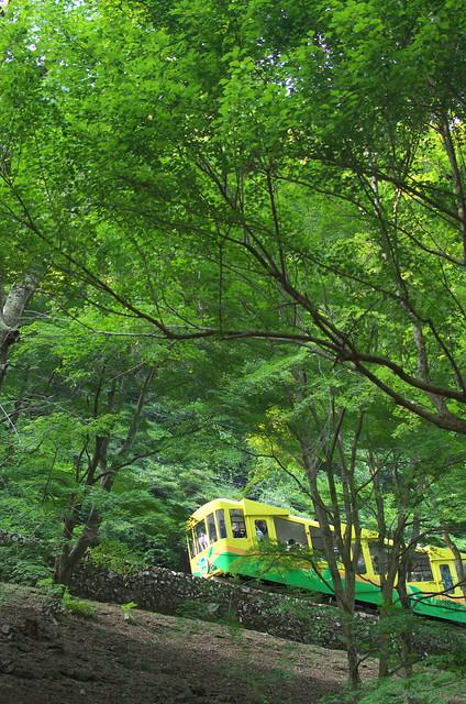 Tokyo Train Story 高尾山ケーブルカー 2014年5月31日